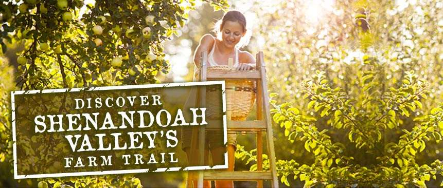 Discover Shenandoah Valley's Farm Trails